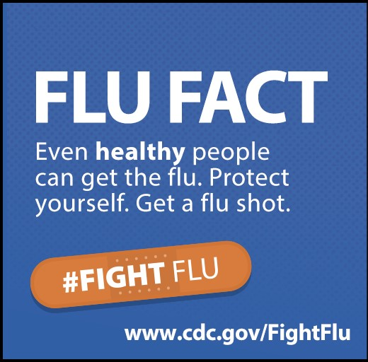 image of flu fact